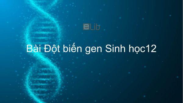 Sinh học 12 Bài 4: Đột biến gen