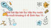 Giải bài tập SGK Sinh học 11 Bài 1