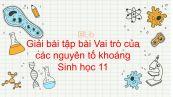 Giải bài tập SGK Sinh học 11 Bài 4
