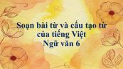 Soạn bài Từ và cấu tạo từ của tiếng Việt đầy đủ