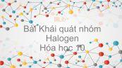 Hoá học 10 Bài 21: Khái quát về nhóm halogen
