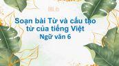 Soạn bài Từ và cấu tạo từ của tiếng Việt siêu ngắn