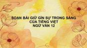 Soạn bài Giữ gìn sự trong sáng của tiếng Việt (tiếp theo) Ngữ Văn 12 siêu ngắn