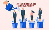 Chiến lược phát triển nguồn nhân lực - Xây dựng tổ chức bền vững