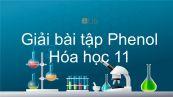 Giải bài tập SGK Hóa 11 Bài 41: Phenol