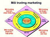 Phân tích cơ hội Marketing: Phân tích môi trường Marketing