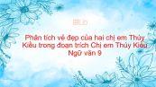 Phân tích vẻ đẹp của hai chị em Thúy Kiều trong đoạn trích Chị em Thúy Kiều của Nguyễn Du