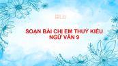Soạn bài Chị em Thuý Kiều Ngữ văn 9 siêu ngắn