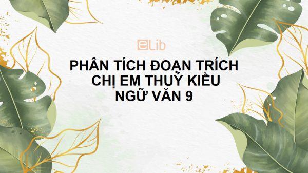 Phân tích đoạn trích Chị em Thúy Kiều của Nguyễn Du