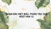 Soạn bài Việt Bắc (Phần một: Tác giả) Ngữ văn 12 tóm tắt
