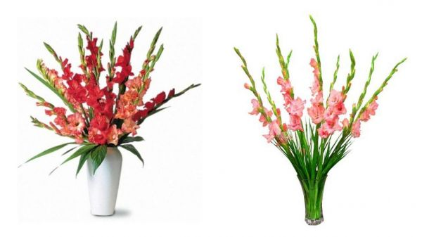 7 cách cắm hoa ngày Tết đẹp mang lại may mắn cho gia đình bạn