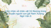 Cảm nhận về nhân vật Vũ Nương qua tác phẩm Chuyện người con gái Nam Xương của Nguyễn Dữ