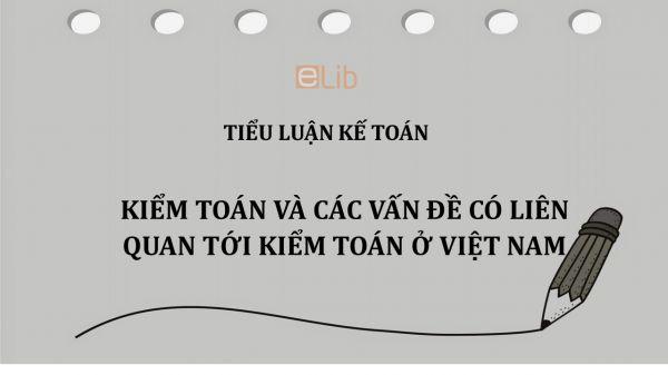 Tiểu luận: Kiểm toán và các vấn đề có liên quan tới kiểm toán ở Việt Nam