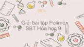 Giải bài tập SBT Hóa 9 Bài 54: Polime