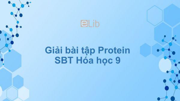 Giải bài tập SBT Hóa 9 Bài 53: Protein