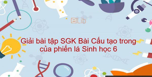 Giải bài tập SGK Sinh học 6 Bài 20: Cấu tạo trong của phiến lá