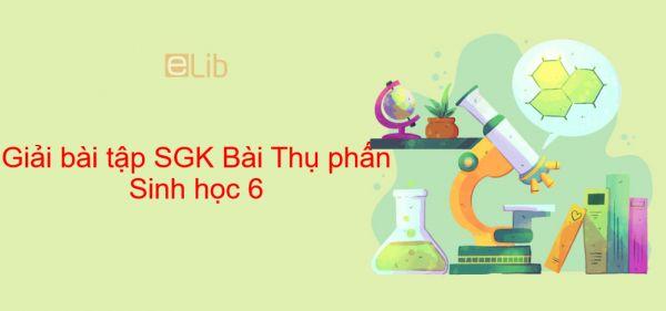 Giải bài tập SGK Sinh học 6 Bài 30: Thụ phấn