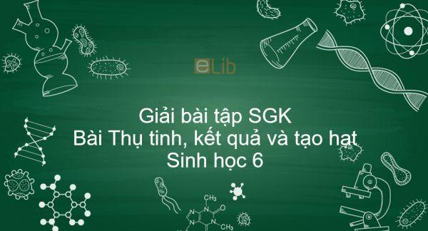 Giải bài tập SGK Sinh học 6 Bài 31: Thụ tinh, kết quả và tạo hạt