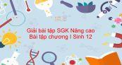 Giải bài tập SGK Sinh 12 Nâng cao Bài 8: Bài tập chương I