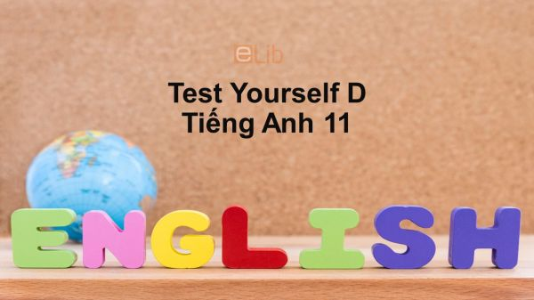 Unit 10-11 lớp 11: Test Yourself D