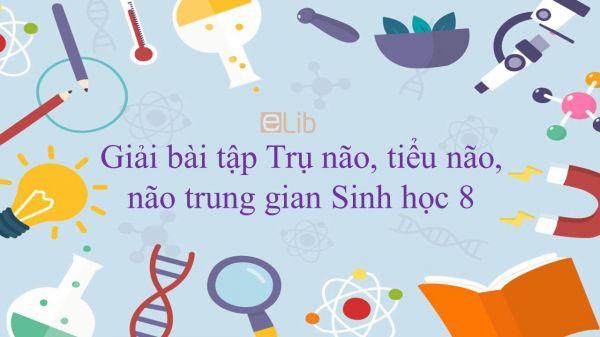 Giải bài tập SGK Sinh học 8 Bài 46: Trụ não, tiểu não, não trung gian