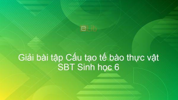 Giải SBT Sinh 6 Bài 7: Cấu tạo tế bào thực vật