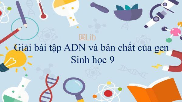 Giải bài tập SGK Sinh học 9 Bài 16: ADN và bản chất của gen