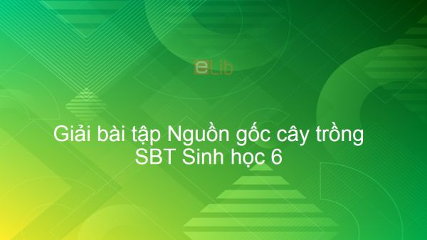 Giải SBT Sinh 6 Bài 45: Nguồn gốc cây trồng