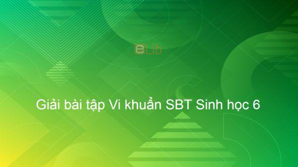 Giải SBT Sinh 6 Bài 50: Vi khuẩn