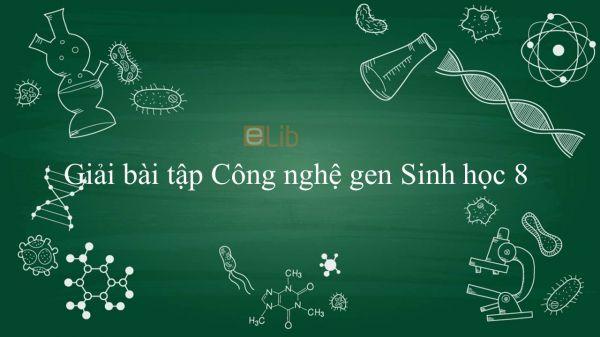 Giải bài tập SGK Sinh học 9 Bài 32: Công nghệ gen