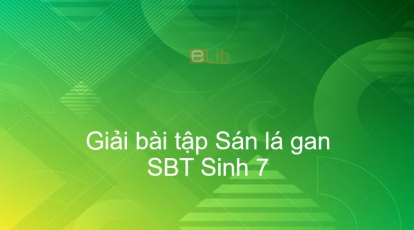Giải SBT Sinh 7 Bài 11: Sán lá gan