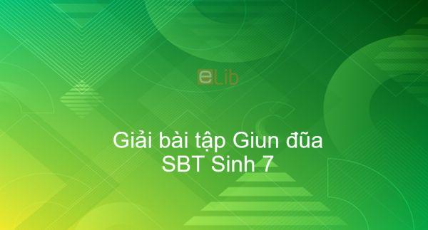 Giải SBT Sinh 7 Bài 13: Giun đũa