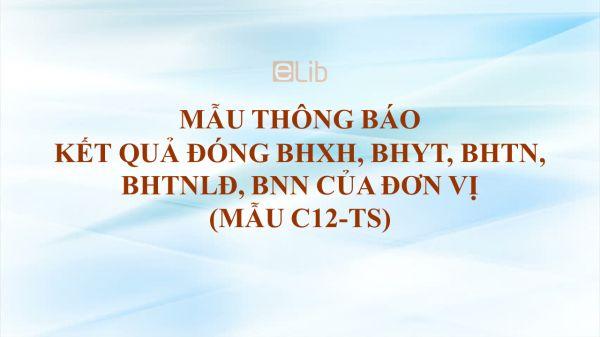 Mẫu C12-TS: Thông báo kết quả đóng BHXH, BHYT, BHTN, BHTNLĐ, BNN của đơn vị