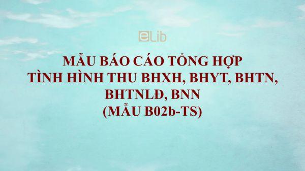 Mẫu B02b-TS: Báo cáo tổng hợp tình hình thu BHXH, BHYT, BHTN, BHTNLĐ, BNN