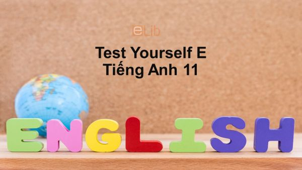 Unit 12-14 lớp 11: Test Yourself E
