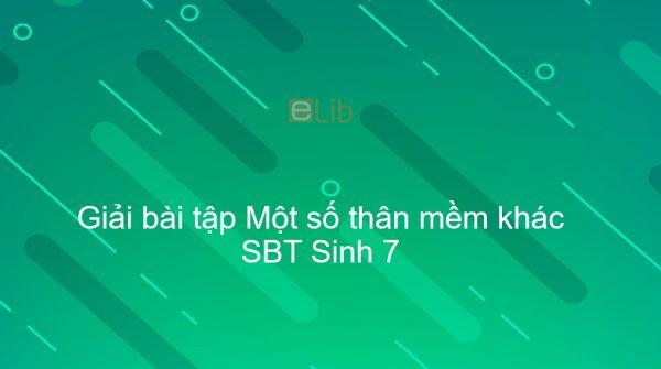Giải SBT Sinh 7 Bài 19: Một số thân mềm khác