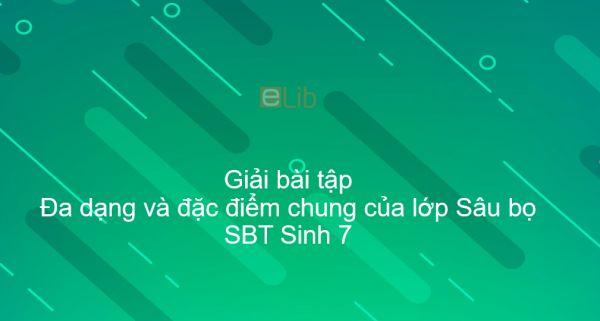 Giải SBT Sinh 7 Bài 27: Đa dạng và đặc điểm chung của lớp Sâu bọ