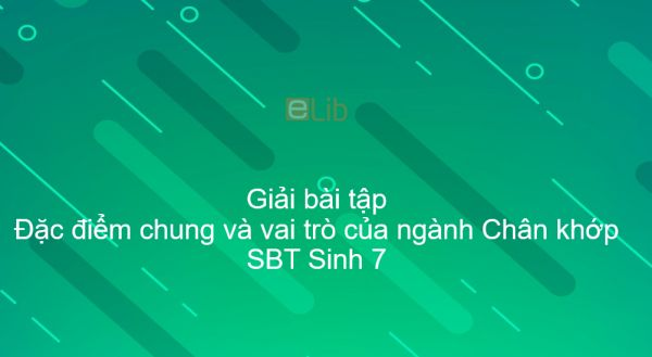 Giải SBT Sinh 7 Bài 29: Đặc điểm chung và vai trò của ngành Chân khớp