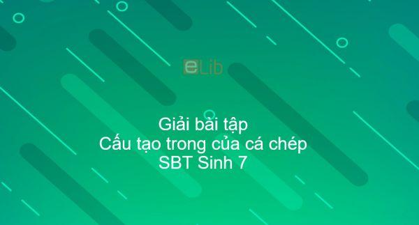 Giải SBT Sinh 7 Bài 33: Cấu tạo trong của cá chép