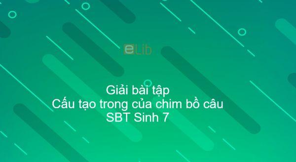 Giải SBT Sinh 7 Bài 43: Cấu tạo trong của chim bồ câu