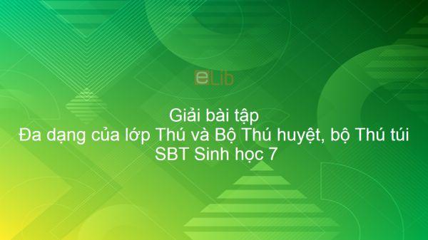 Giải SBT Sinh 7 Bài 48: Đa dạng của lớp Thú và Bộ Thú huyệt, bộ Thú túi