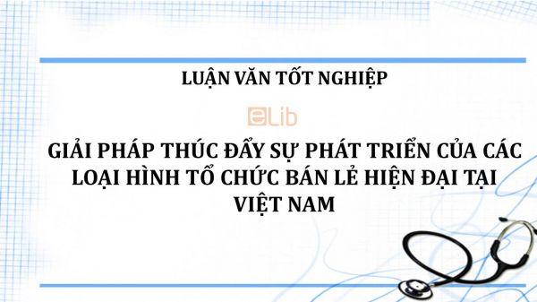 Luận văn: Giải pháp thúc đẩy sự phát triển của các loại hình tổ chức bán lẻ hiện đại tại Việt Nam