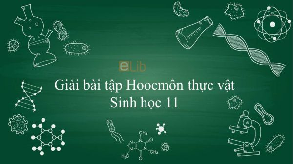 Giải bài tập SGK Sinh học 11 Bài 35: Hoocmôn thực vật