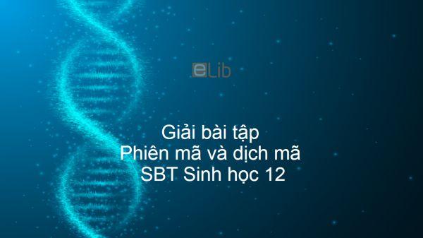 Giải SBT Sinh 12 Bài 2: Phiên mã và dịch mã