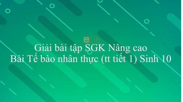 Giải bài tập SGK Sinh học 10 Nâng Cao Bài 15: Tế bào nhân thực (tiếp theo)