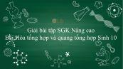 Giải bài tập SGK Sinh học 10 Nâng Cao Bài 25: Hóa tổng hợp và quang tổng hợp