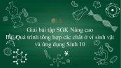 Giải bài tập SGK Sinh học 10 Nâng Cao Bài 34: Quá trình tổng hợp các chất ở vi sinh vật và ứng dụng