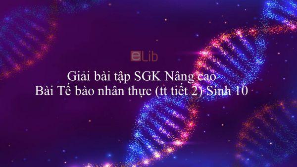 Giải bài tập SGK Sinh học 10 Nâng Cao Bài 16: Tế bào nhân thực (tiếp theo)