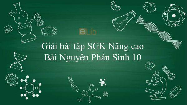 Giải bài tập SGK Sinh học 10 Nâng Cao Bài 29: Nguyên Phân