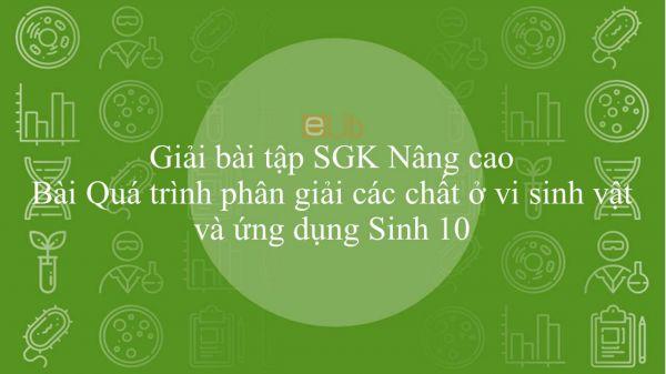 Giải bài tập SGK Sinh học 10 Nâng Cao Bài 35: Quá trình phân giải các chất ở vi sinh vật và ứng dụng